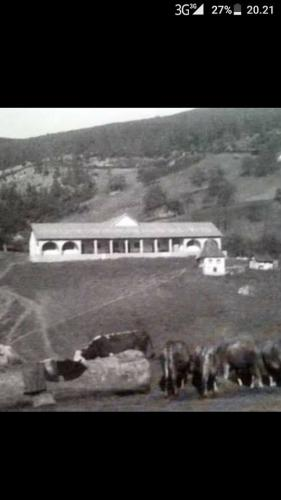 Osnovna skola Mesici